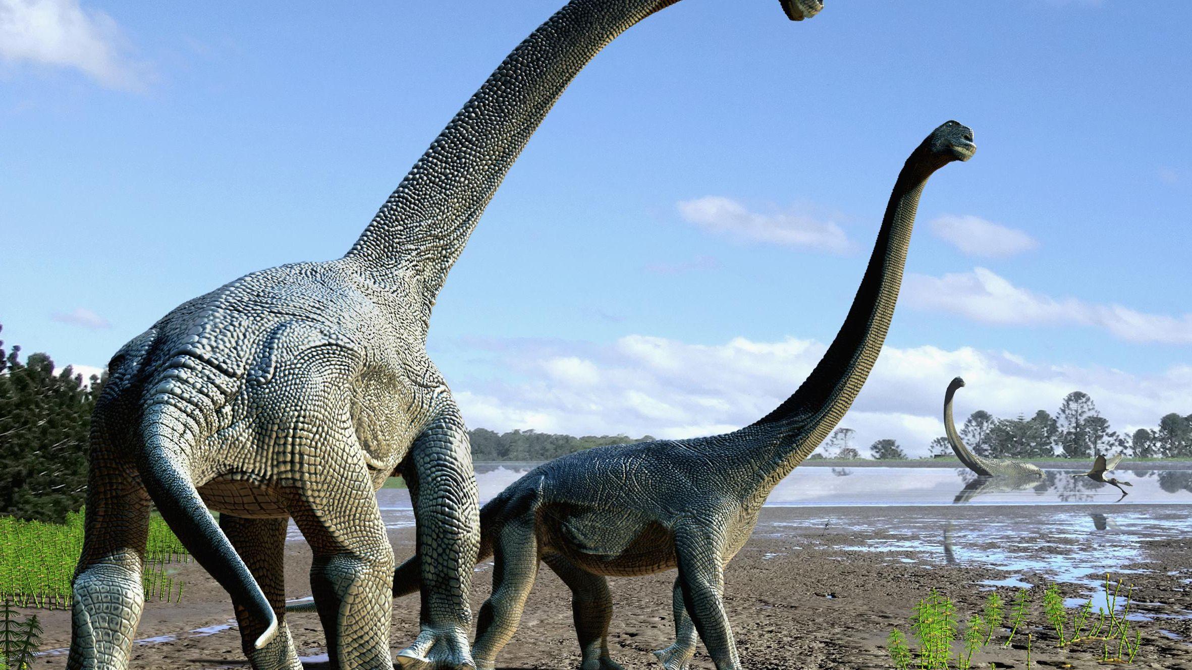 Documentaire Le réveil des dinosaures géants