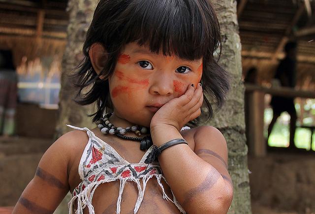 Documentaire Les paradis perdus d'Amazonie (1/2)