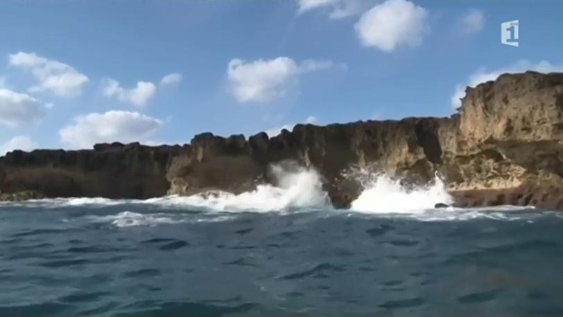 Documentaire Walpole, l'île mystérieuse