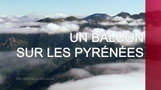 Documentaire Un balcon sur les Pyrénées