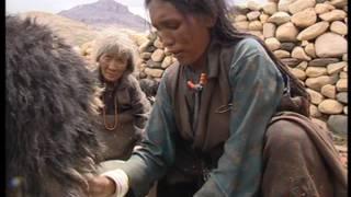 Documentaire Dolpo, les enfants de la montagne
