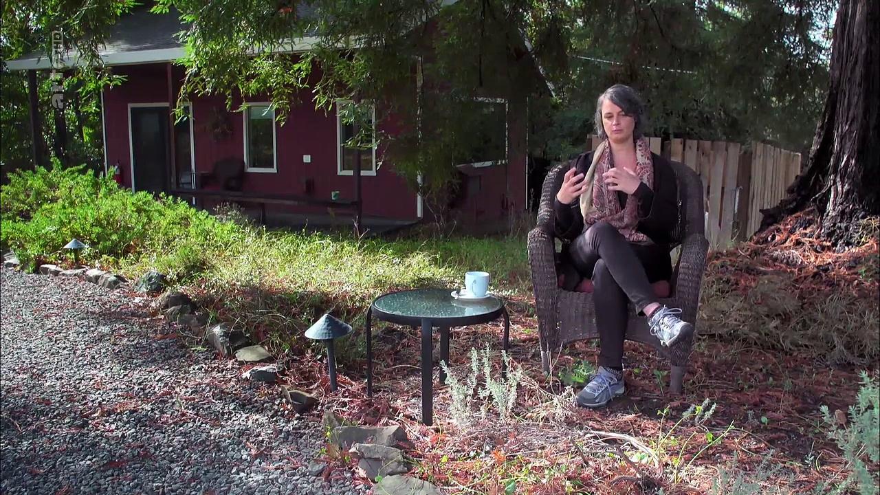 Documentaire Histoires d'arbres – Les survivants