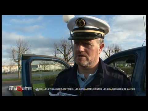 Documentaire Magouilles et danger sanitaire, les gendarmes contre les braconniers de la mer