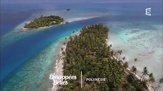 Documentaire Échappées belles – Polynésie, un goût de paradis