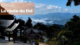 Documentaire Chine, sur la route du thé