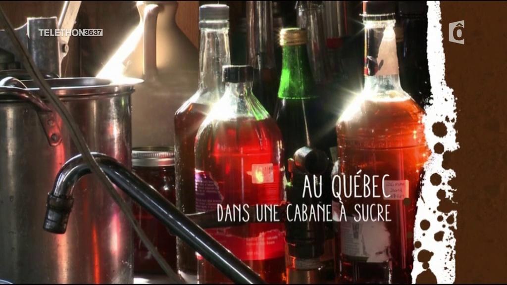 Documentaire Destination wwoofing – Québec : dans une cabane à sucre