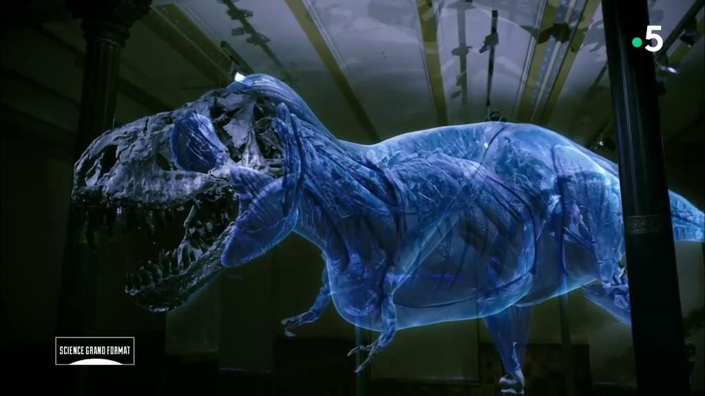 Documentaire La vérité sur le T-Rex