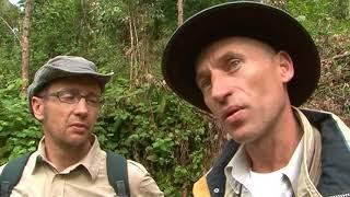 Documentaire Les senteurs de Madagascar