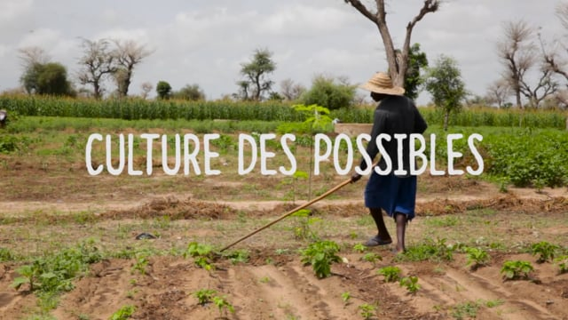 Documentaire Culture des possibles