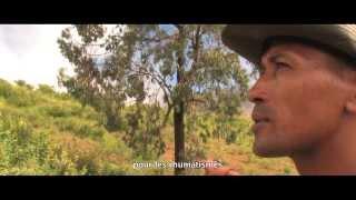 Documentaire Généreux Cap Vert