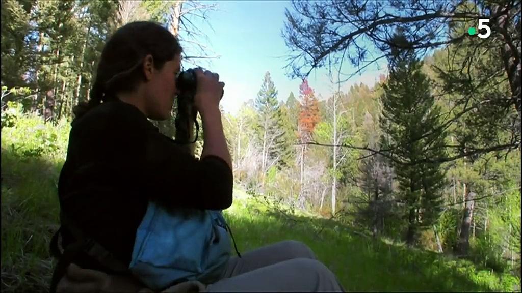 Documentaire La rivière sans retour