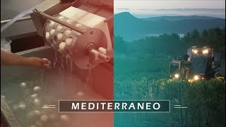 Documentaire Mozzarella et vin