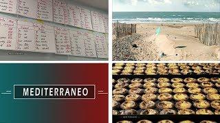 Documentaire La langue française en Tunisie