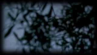 Documentaire La roussette