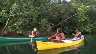 Documentaire Au parc Provincial de la rivière bleue – 2/4
