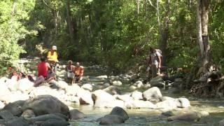 Documentaire Ouaté, une expedition botanique