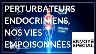 Documentaire Perturbateurs endocriniens, nos vies empoisonnées