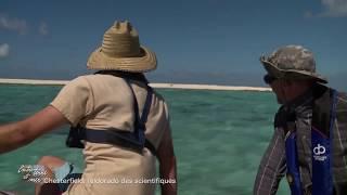 Documentaire Entre terre et mer – Chesterfield, l'eldorado des scientifiques