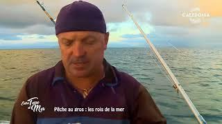 Documentaire Entre terre et mer – Pêche au gros,  les rois de la mer