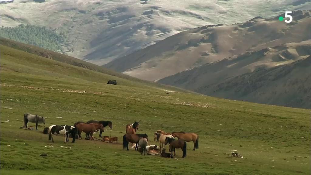 Documentaire Embarquement immédiat – Les monts de l'Altaï