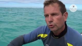 Documentaire Entre terre et mer – Eco-découverte à Bourail
