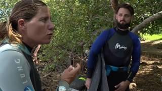 Documentaire Entre terre et mer – Le suivi du récif