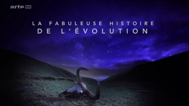 Documentaire La fabuleuse histoire de l'évolution – Ep01 – Afrique, le rift Albertin