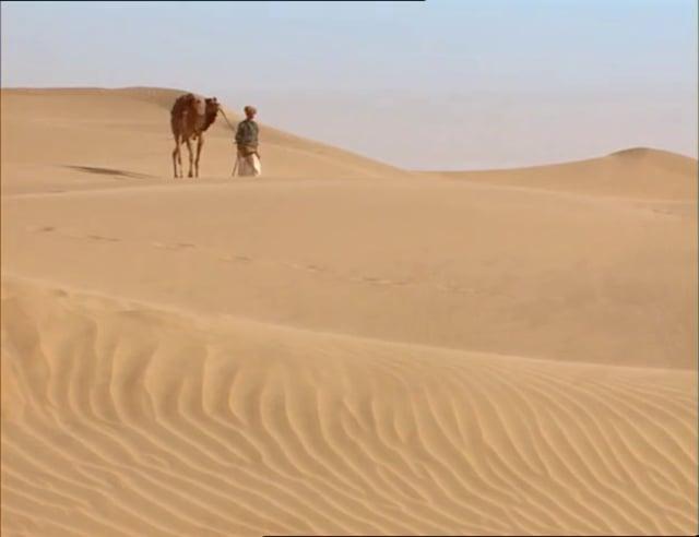 Documentaire Le père des chameaux