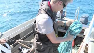 Documentaire Entre terre et mer – Mission Pristine (1/2)