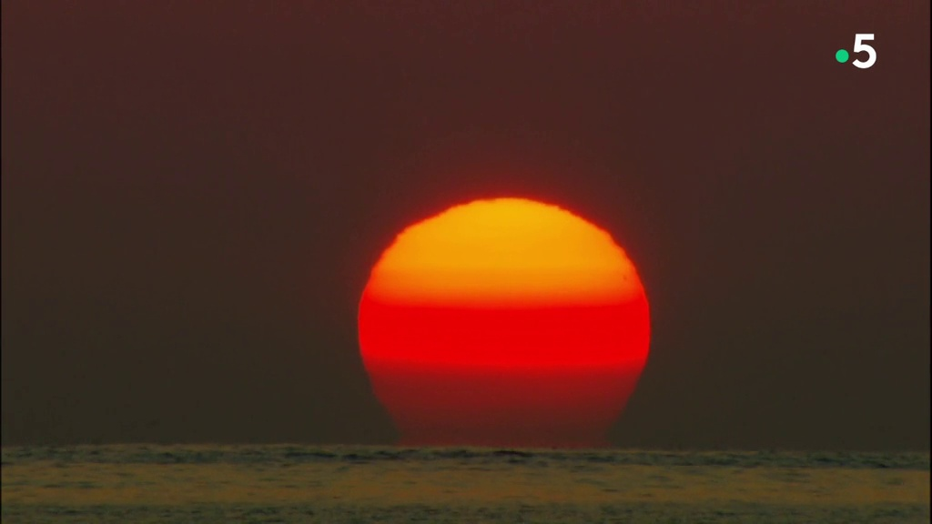 Documentaire Sale temps pour la planète – Hawaii, urgences d'Etat (1/2)