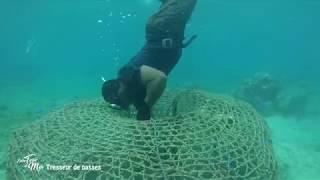 Documentaire Entre terre et mer – Tresseur de nasses à Lifou