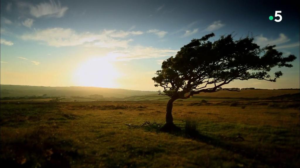 Documentaire Vivre loin du monde – Devon