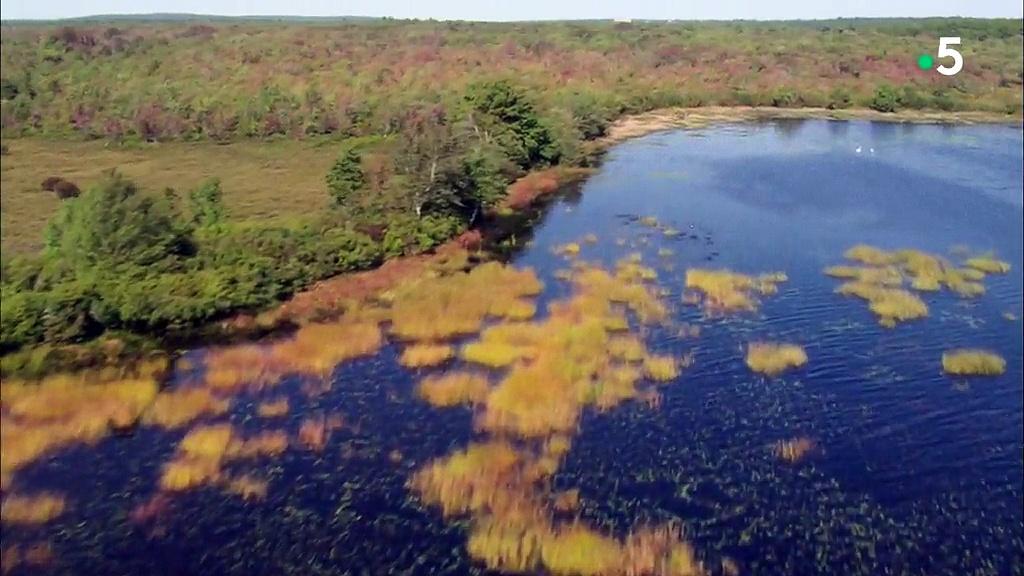 Documentaire Vues d'en haut – Les côtes du Rhode Island