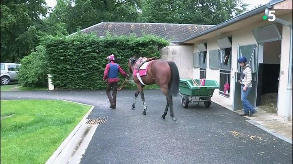 Documentaire Chantilly, la capitale du cheval
