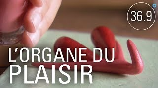 Documentaire Entre plaisir et santé: que savez-vous du clitoris?