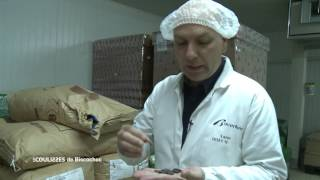 Documentaire Les coulisses – Biscochoc (1/2)