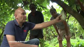 Documentaire Les coulisses – Biscochoc (2/2)