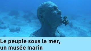 Documentaire Le peuple sous la mer, un musée marin