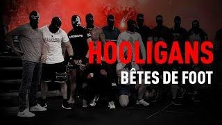 Documentaire Hooligans : bêtes de foot