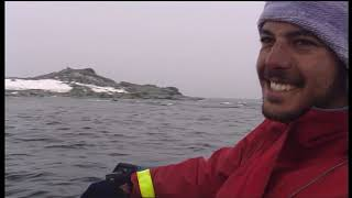 Documentaire Le léopard de mer, seigneur des glaces