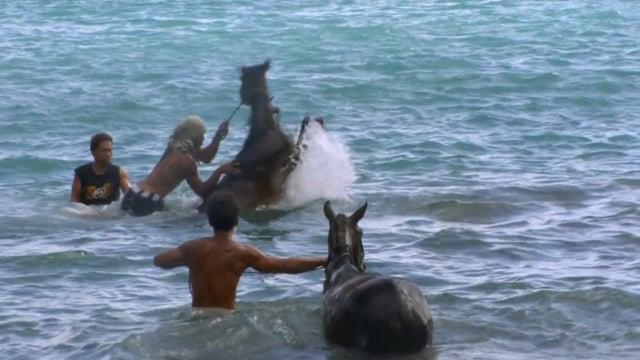 Documentaire Hakahetau un village marquisien