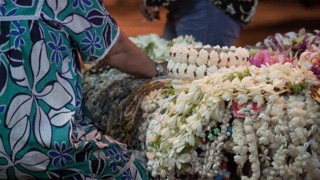 Documentaire Les fleurs de Maiarii