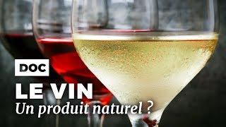 Documentaire Le vin est-il toujours un produit naturel ?