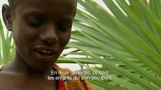 Documentaire Enfants des déserts – Ali, enfant des Allols