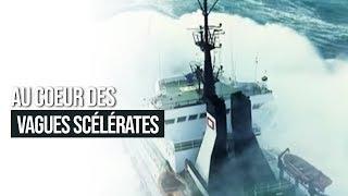 Documentaire Au coeur des vagues scélérates
