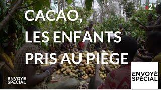 Documentaire Cacao : les enfants pris au piège