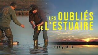 Documentaire Médoc : les oubliés de l'estuaire