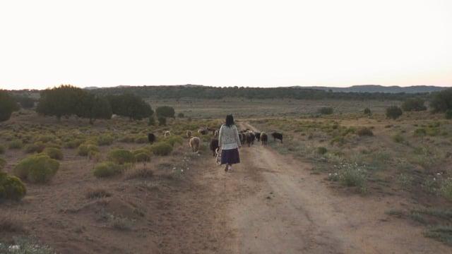 Documentaire Retour en terre sacrée