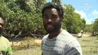 Documentaire Engagé pour ma terre