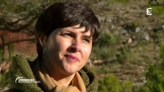 Documentaire Aix-en-Provence, d'art d'art
